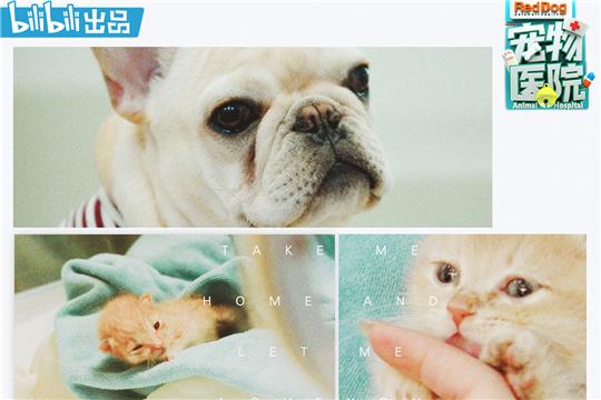 《宠物医院》共情治愈 传递养宠正能量价值